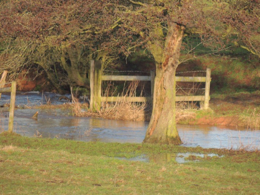 22_02_2015 The Bridge in the Meadow cannot be seen as Newstead Brook  Floods