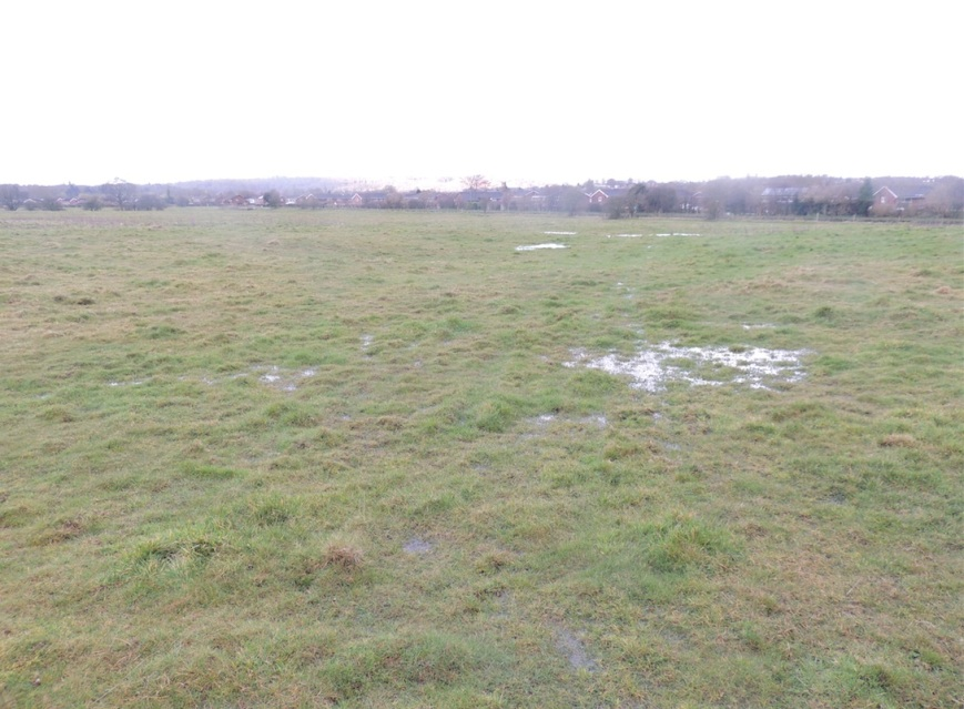 Buying a Barratt Home on the Meadow.  You'll need Wellies!